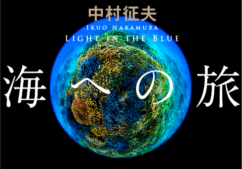 「海への旅 Light in the Blue」